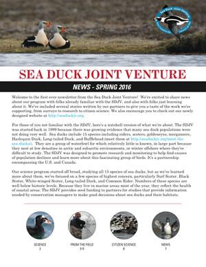 SDJV Newsletter Spring 2016