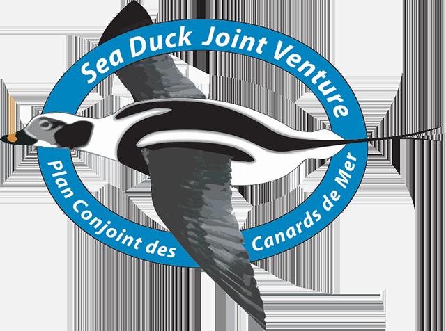 Sea Duck Joint Venture